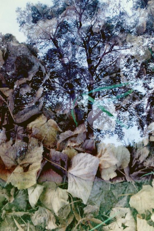2014-10-16_24