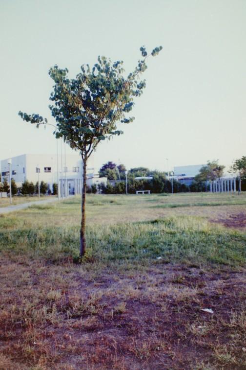 2012-07-04_38