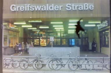 berlineringgreiswalder_1