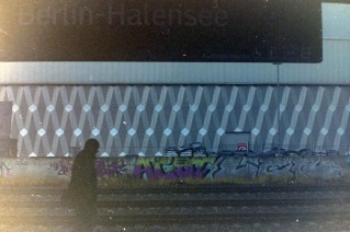 berlineringhalensee_2